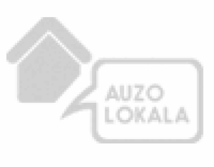 Areantzako Auzolokala